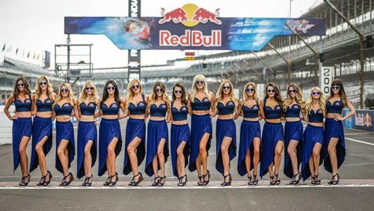 Red Bull grid girls